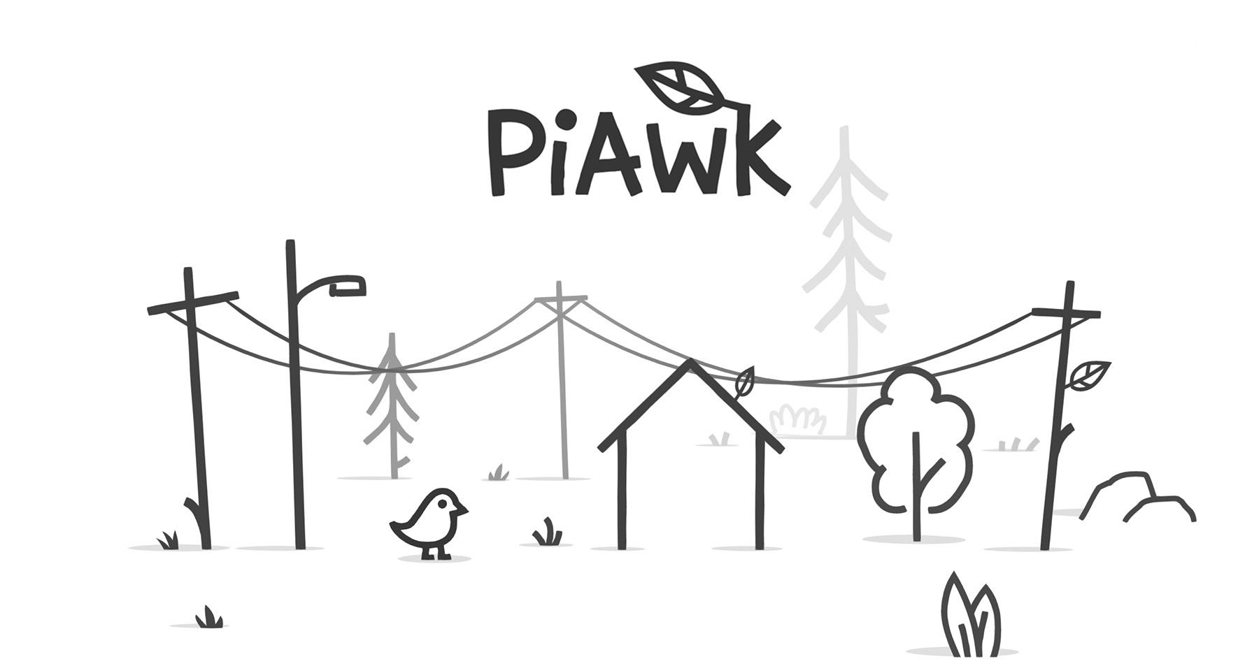 PiAwk (Demo)