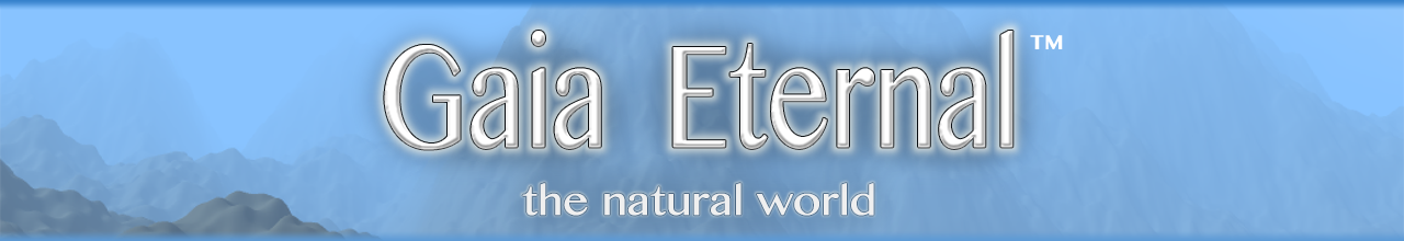 Gaia Eternal