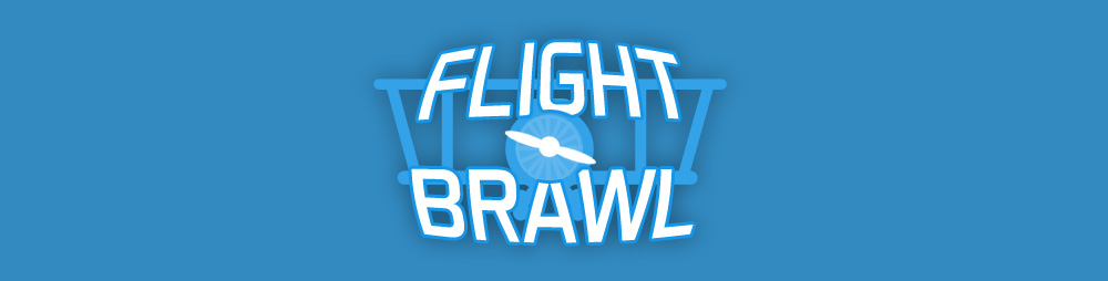 Flight Brawl VR