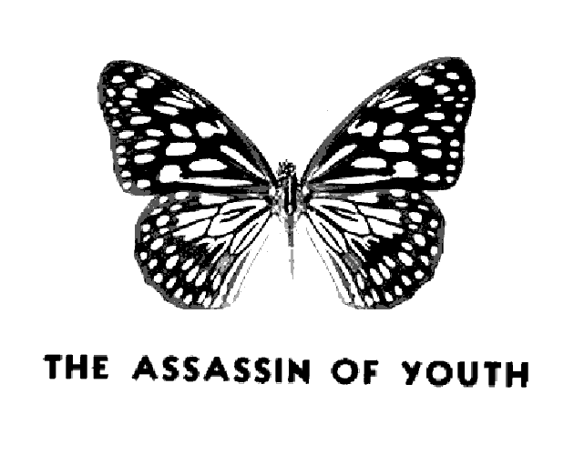 THE ASSASSIN OF YOUTH
