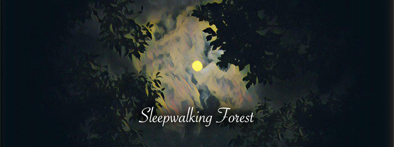 Sleepwalking Forest 몽유림 (Sound Novel)