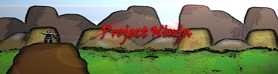 Project Ninja II