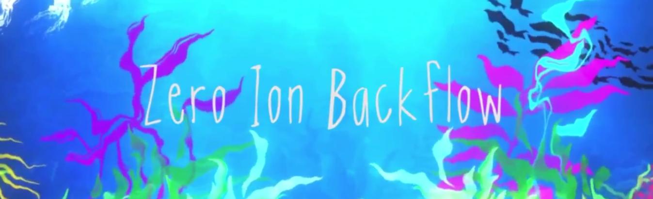 Zero Ion Backflow