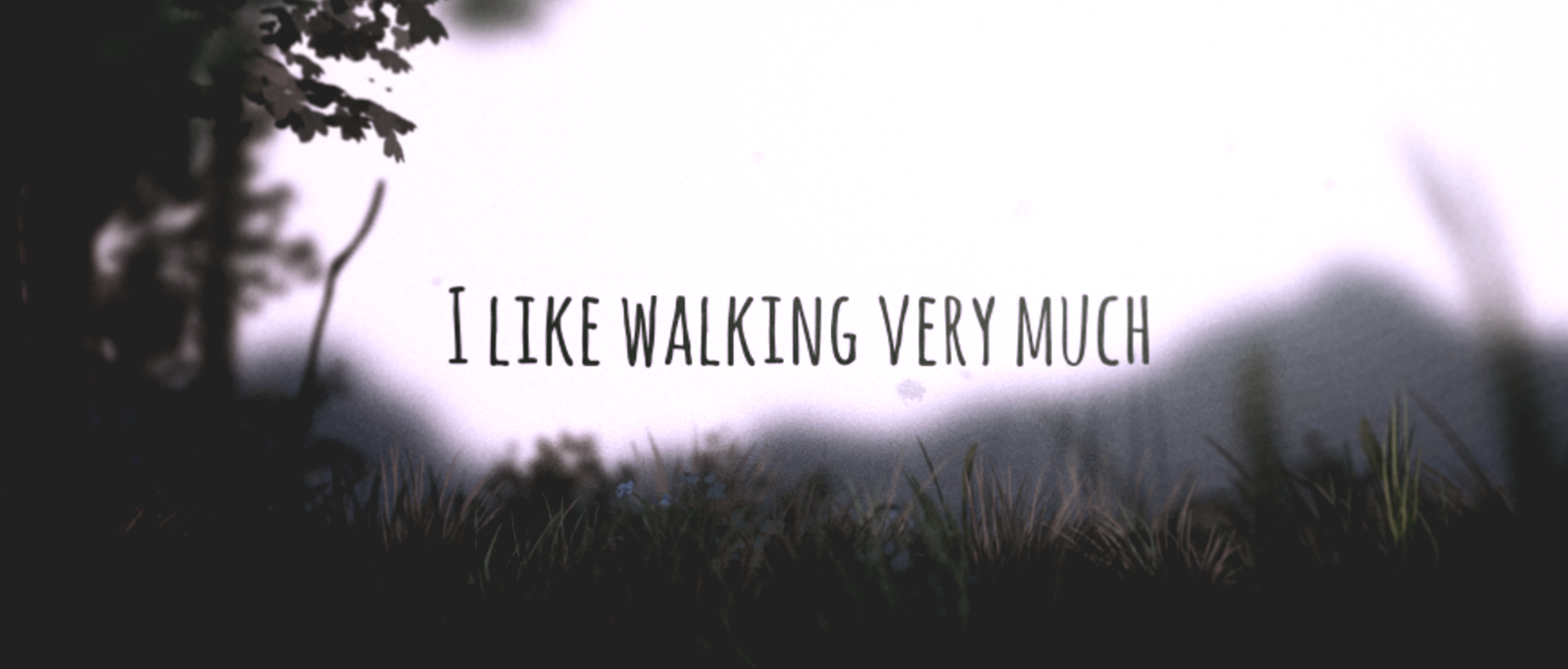 I Like Walking Very Much