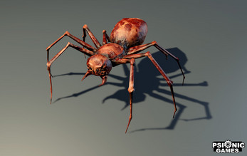 Spider - Low Poly - Animated