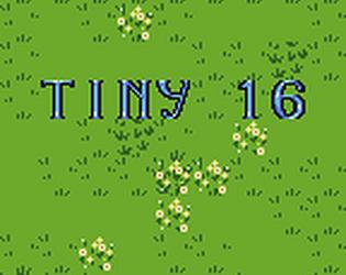 Tiny 16 by Sharm