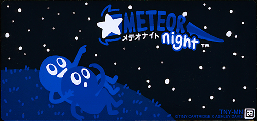 Meteor Night