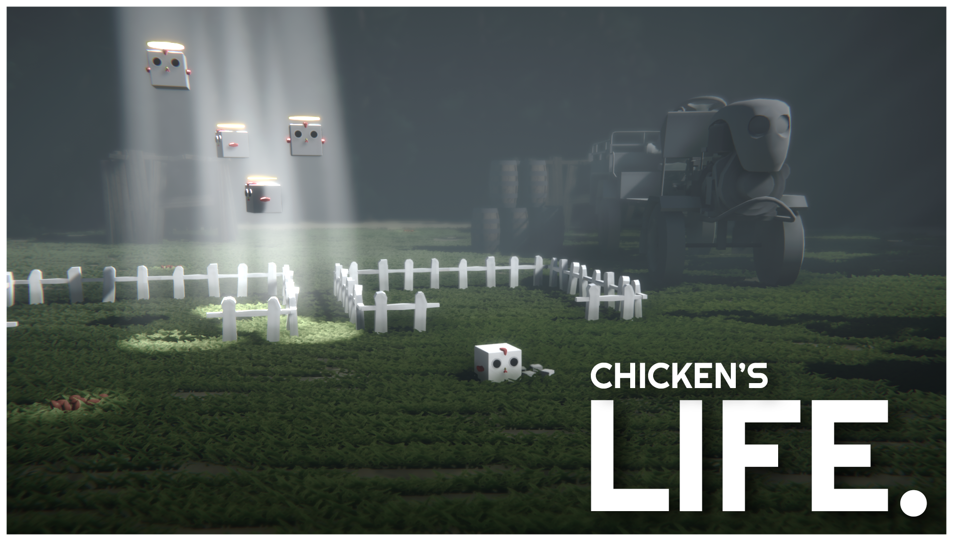 CHICKEN'S LIFE