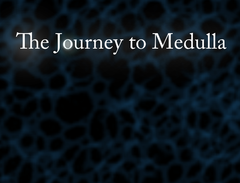 The Journey To Medulla by ihavenoskin