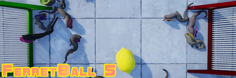 FerretBall 5