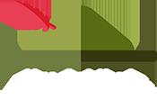 Yvo Geldhof logo