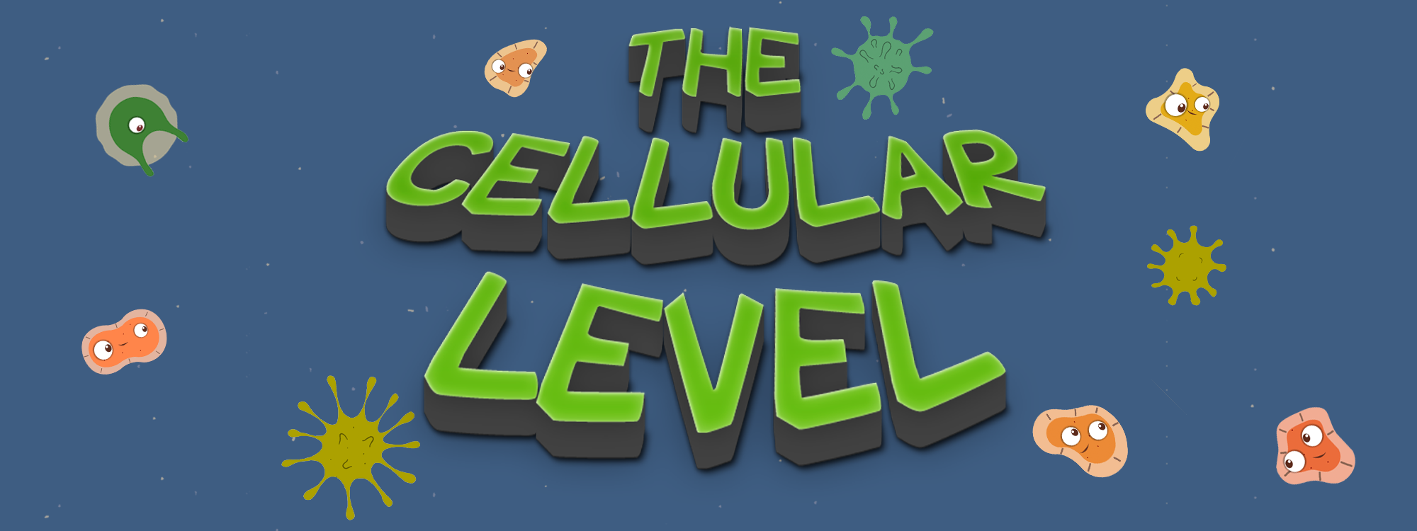 The Cellular Level