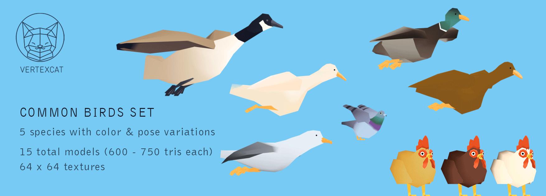 Common birds set