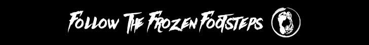Follow the Frozen Footsteps