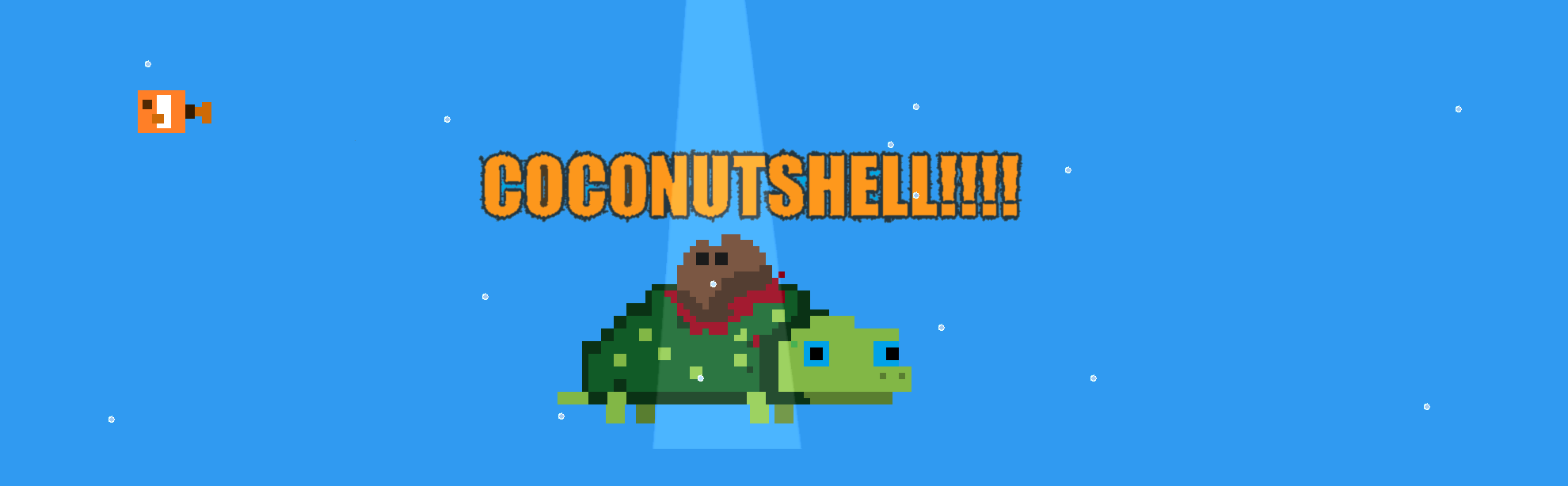 COCONUTT SHELL!!!