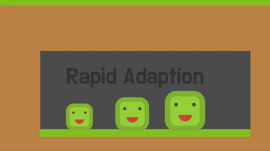 Rapid Adaption