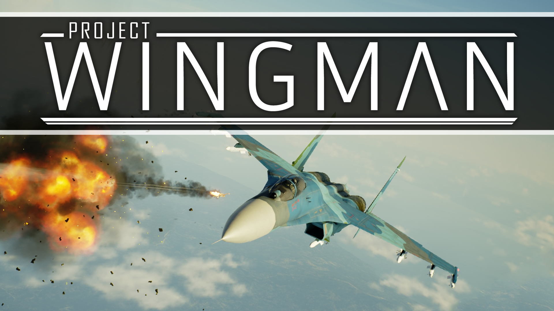 Project Wingman Alpha