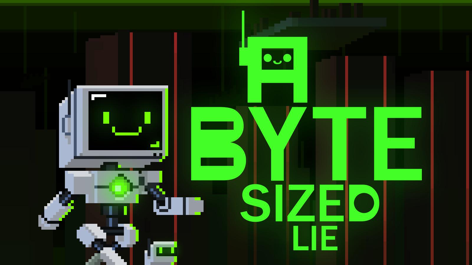 A Byte Sized Lie
