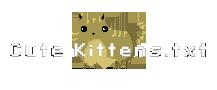 cute_kittens.txt