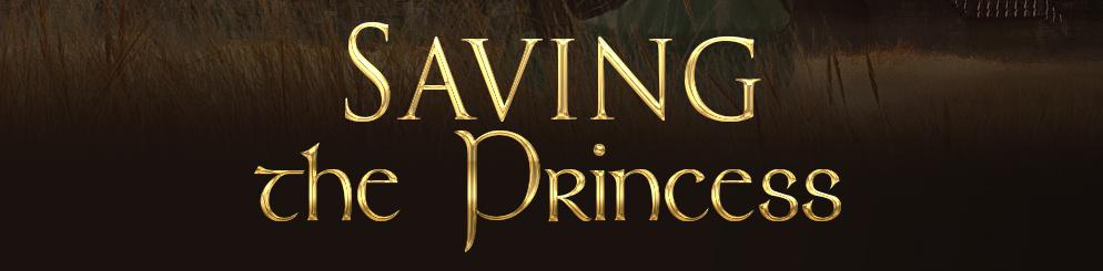Saving the Princess 2