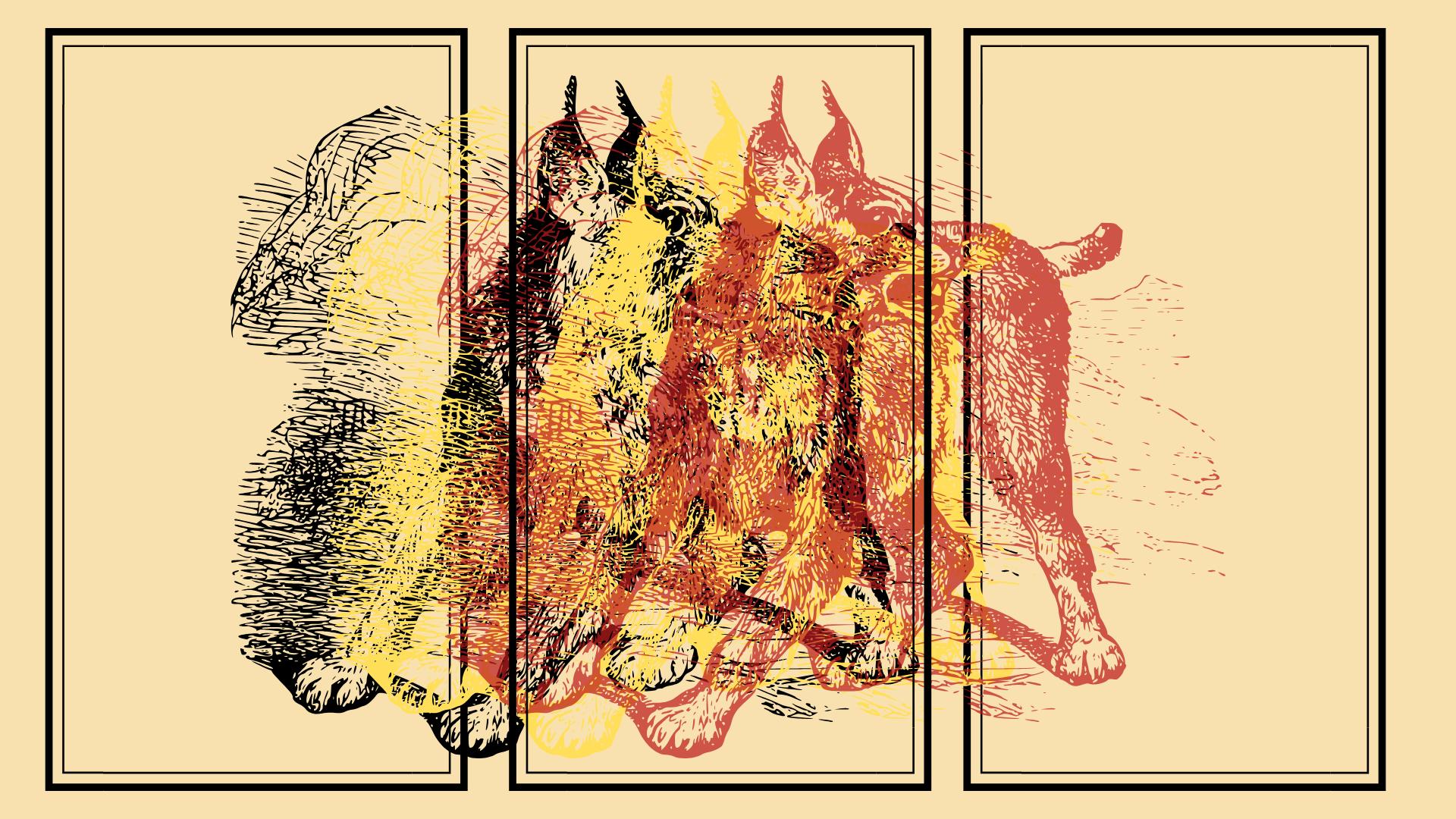 Background: Cat's Child