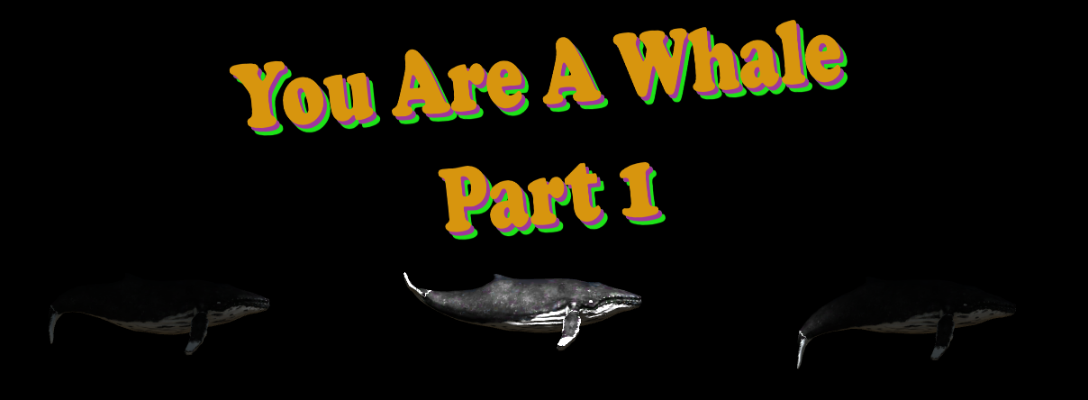 You Are A Whale Part 1