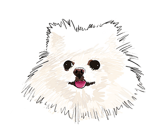 The Pomeranian [Free] [Other] [Windows] [macOS] [Linux]