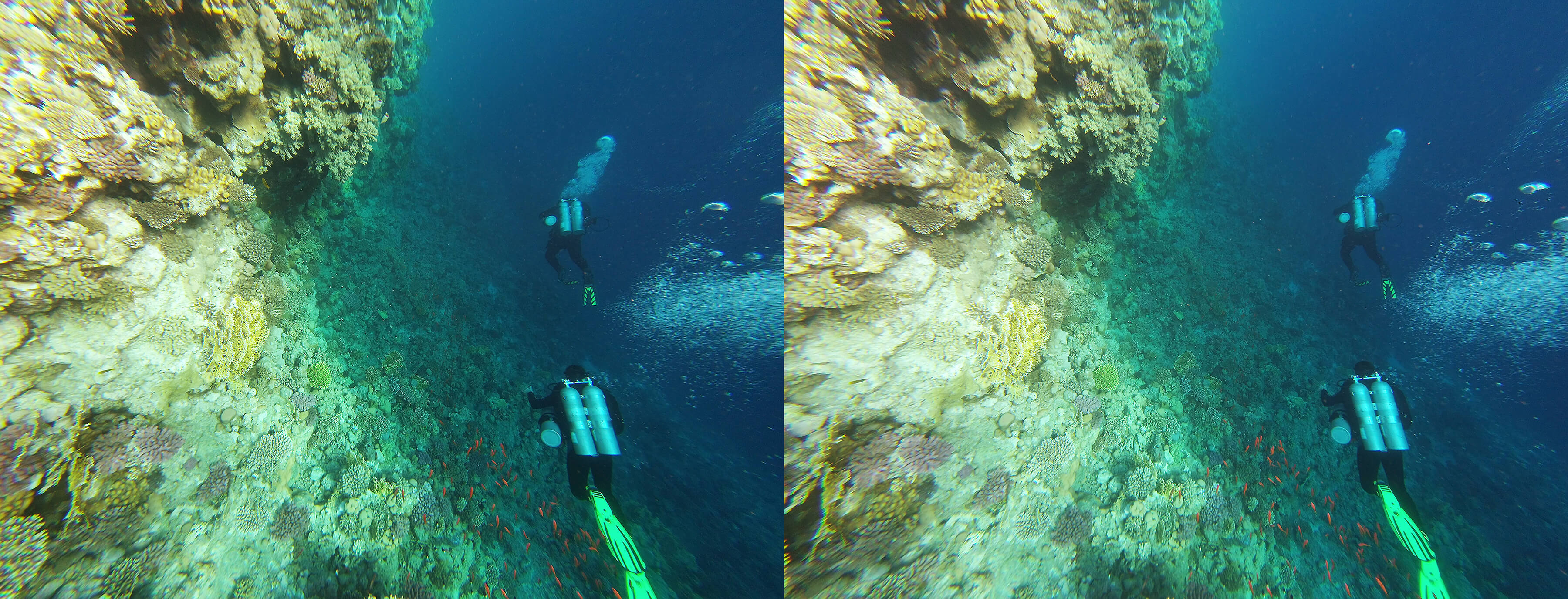 Diving on the Red sea - google cardboard VR