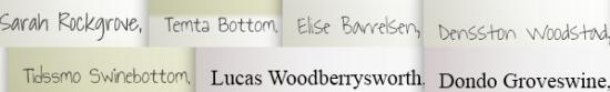 Screenshot of random names: Sarah Rockgrove, Temta Bottom, Elsie Barrelsen, Densston Woodstad, Tidssmo Swinebottom, Lucas Woodberrysworth, Dondo Groveswine