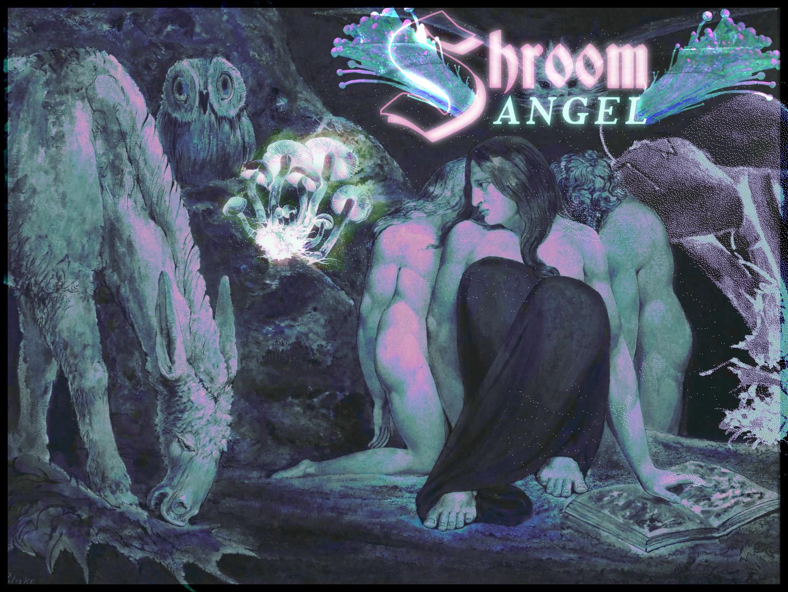 🍄 SHROOM ANGEL 🍄