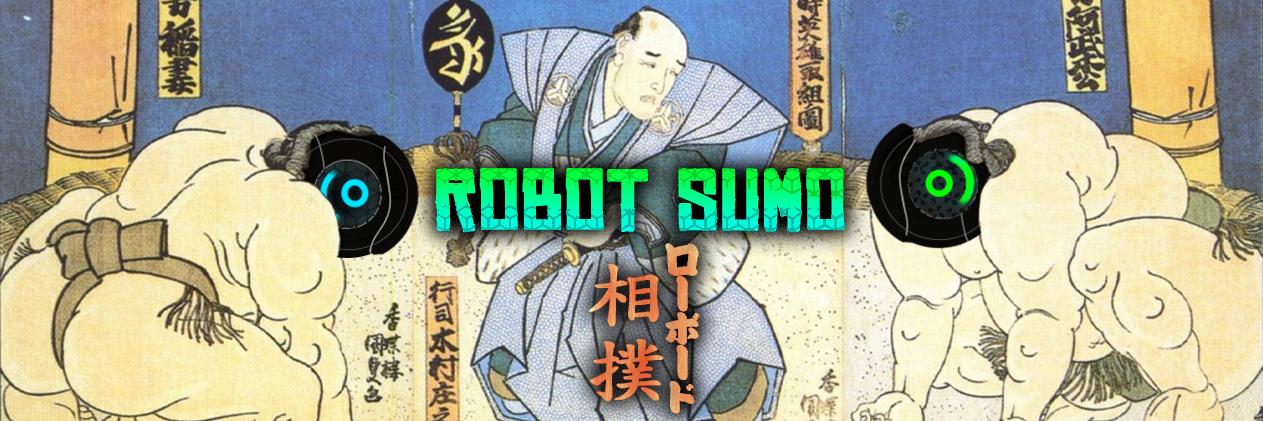 Robotic Vacuum Sumo
