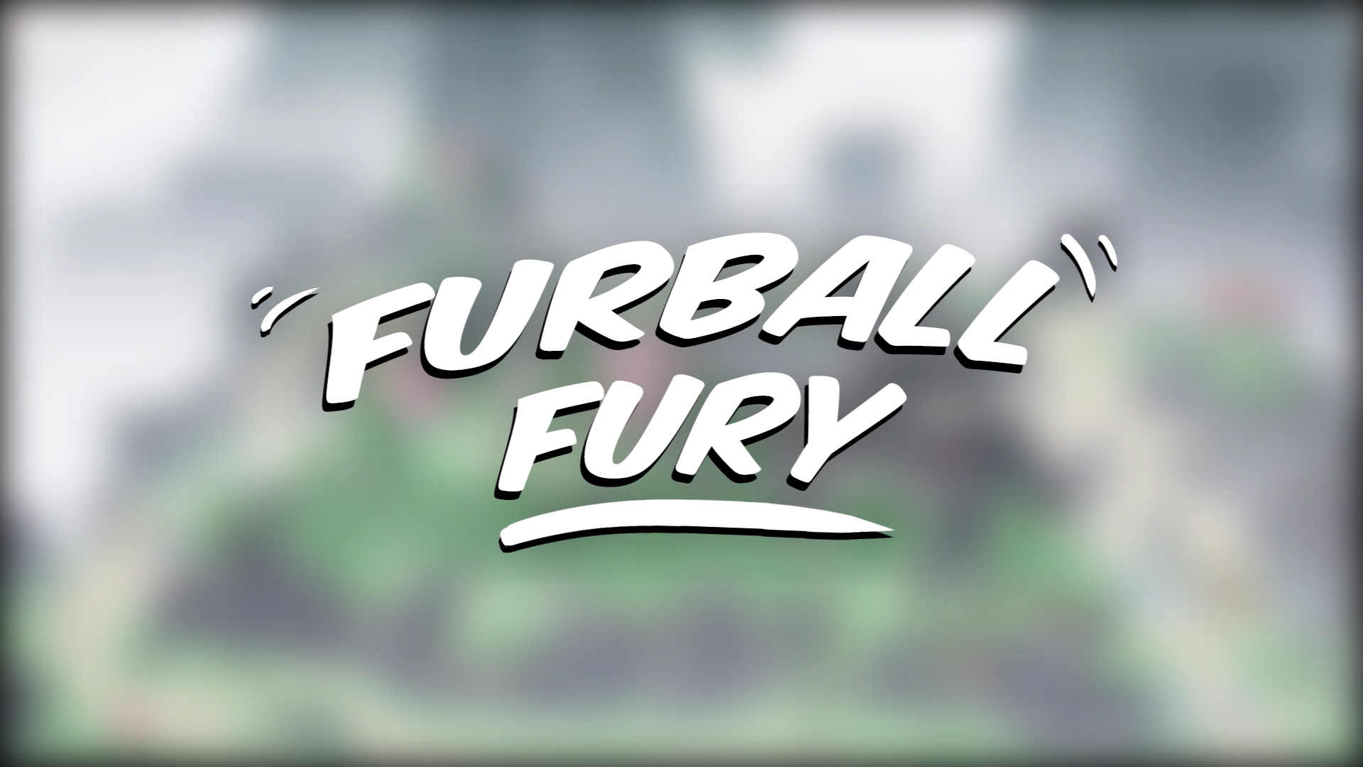 [Group17] Furball Fury