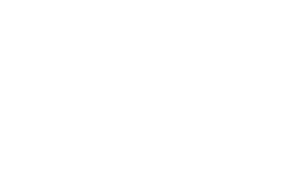Notebook Detective