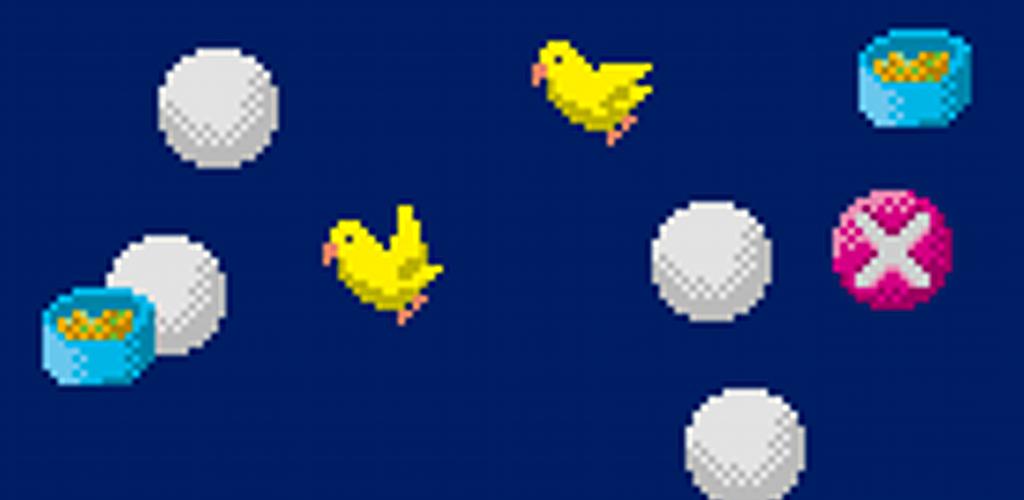 Bird Balls XL