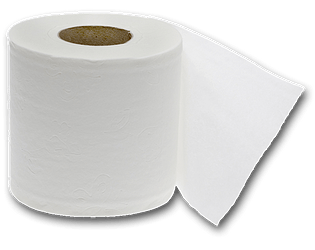 Toilet Paper Dating Simulator [Free] [Visual Novel] [Windows] [macOS] [Linux]