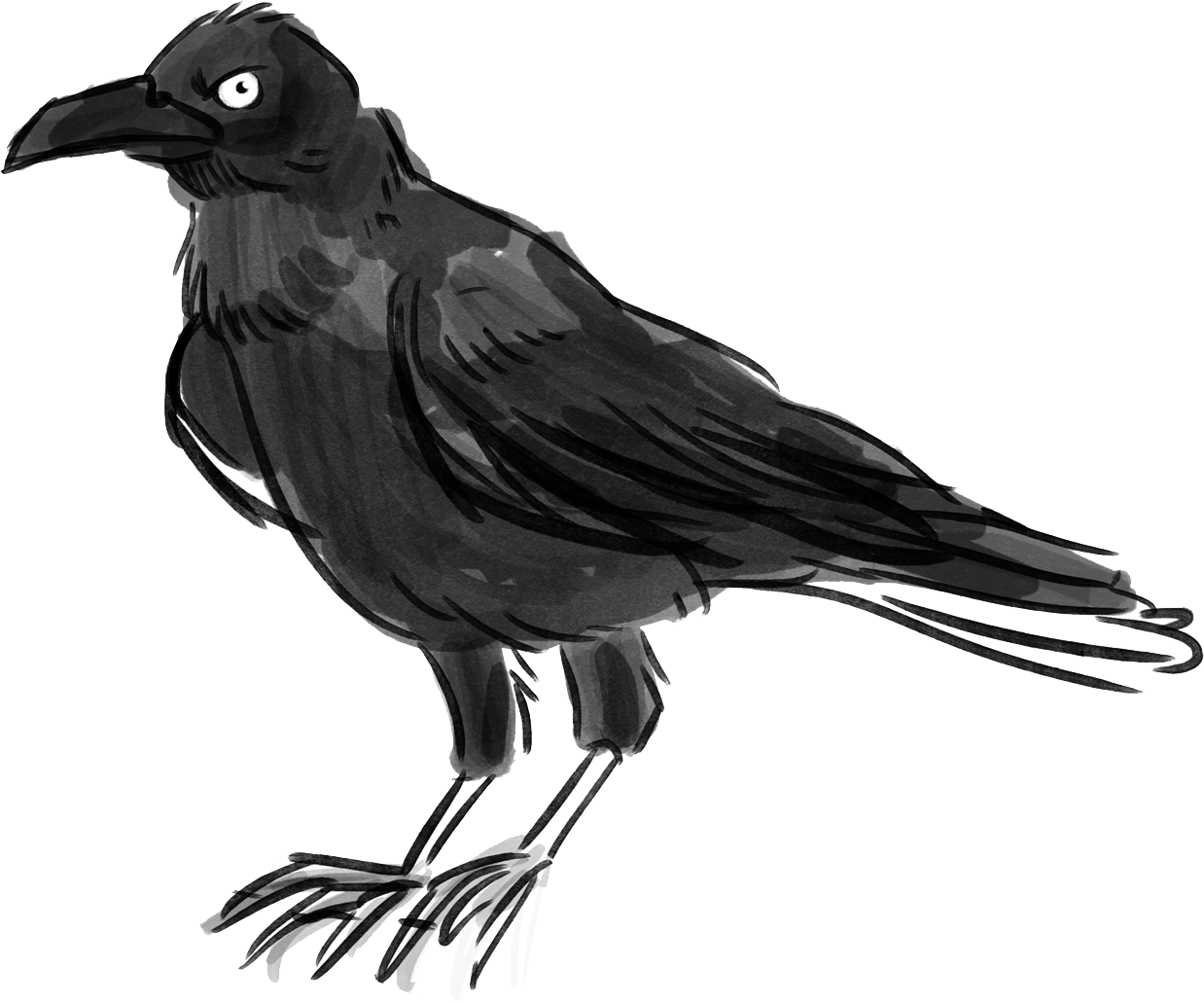 Noppy S Mysterious Crow By Goldietesting
