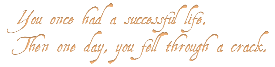 You once had a successful life