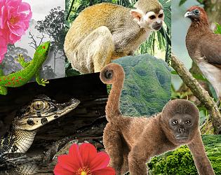 Penumbra (un juego de Saving Monkeys)