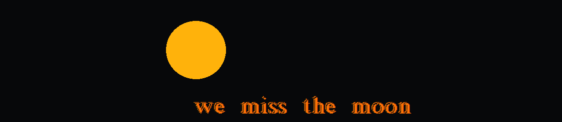 we miss the moon
