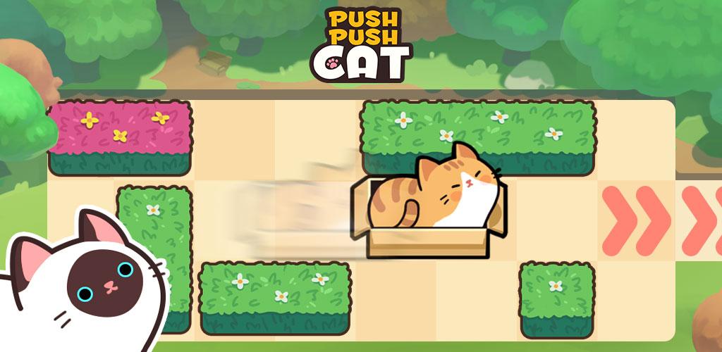 Push Push Cat