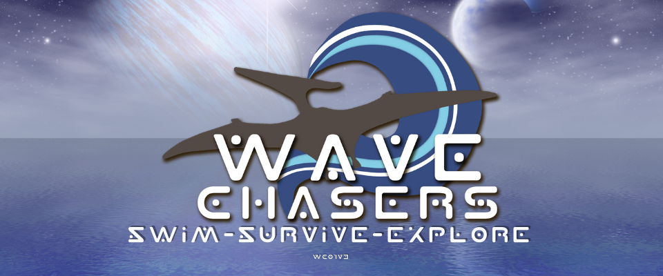 Wave Chasers