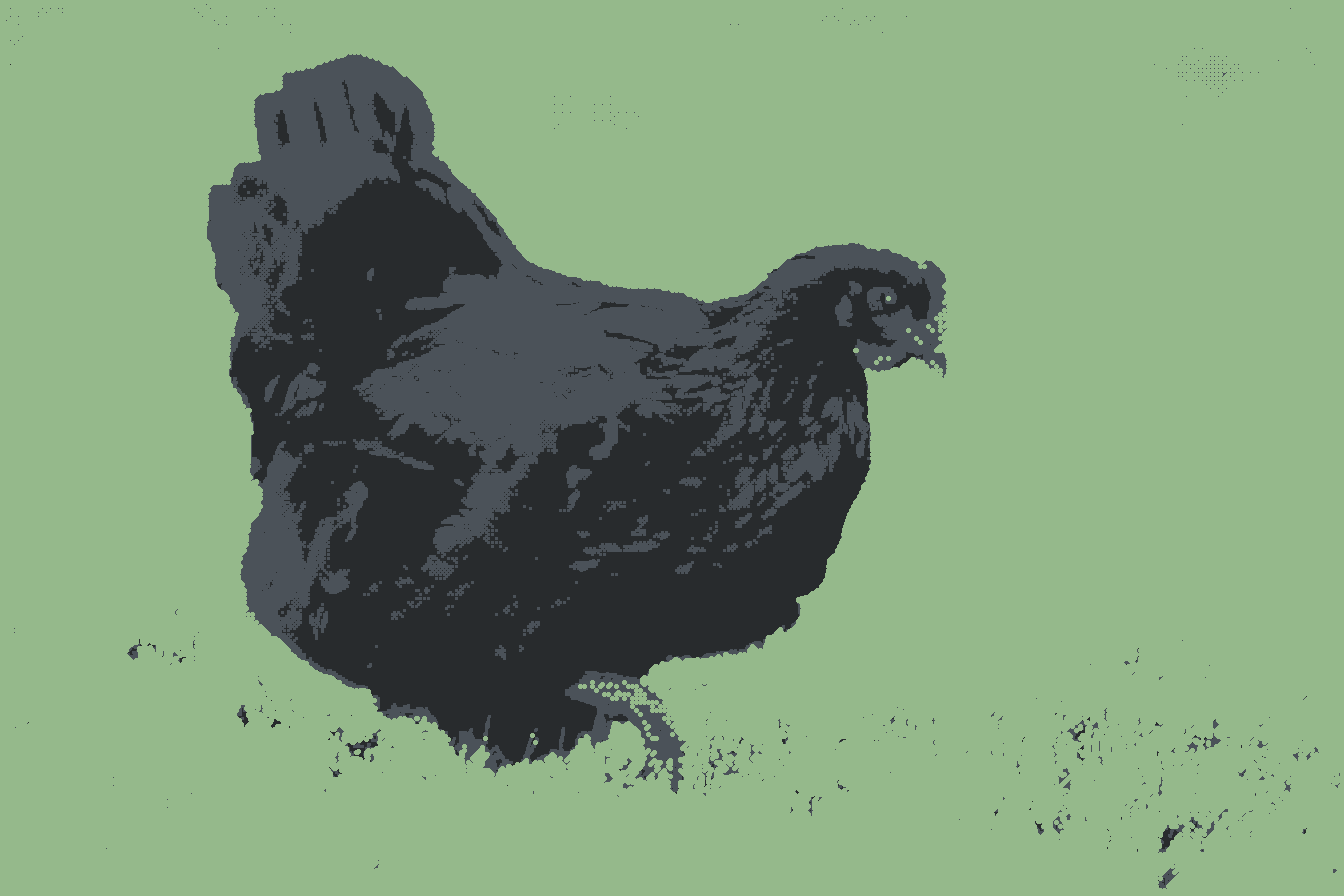 A CLUTCH OF CHICKENS IN THE POST-APOCALYPSE 1000 STRONG