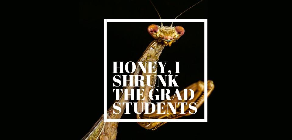 Honey, I Shrunk The Grad Students