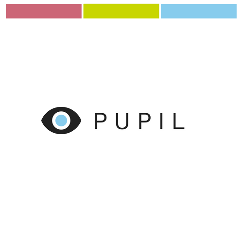 Pupil: Accessibility in VR