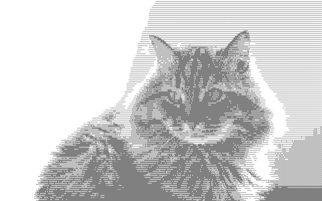 Striped gray cat image in Amstrad CPC format