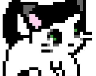 Cat VS Carrier
