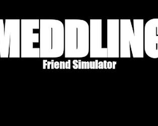 Meddling Friend Simulator