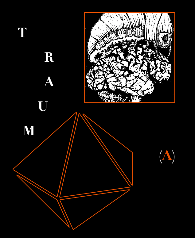 traum(a)