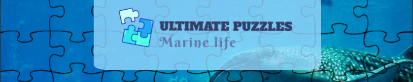 Ultimate Puzzles Marine Life