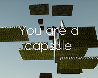 You are a capsule
